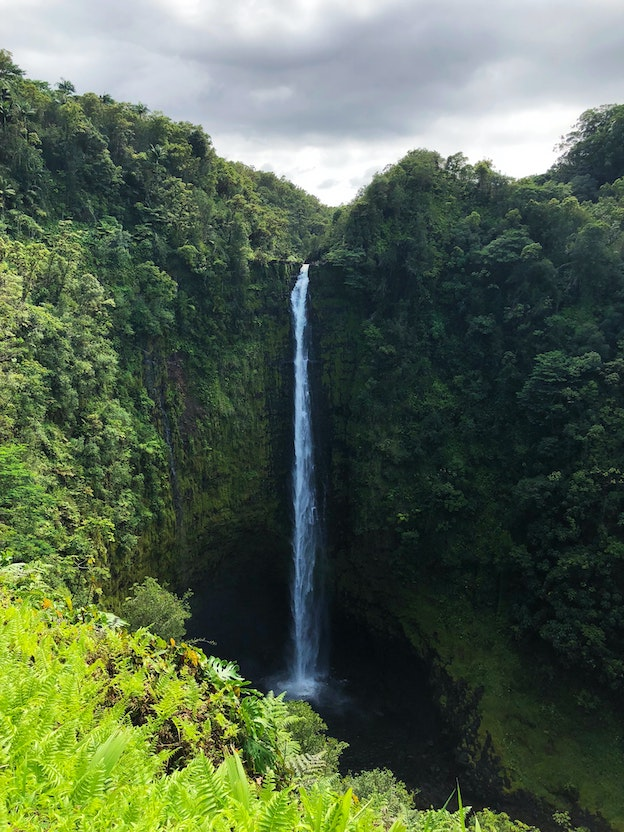 Things to see and do on the historic Hāmakua Coast